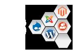 Open Source WordPress Web Design
